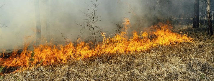 Fire Alert Issued as Drought Conditions Worsen