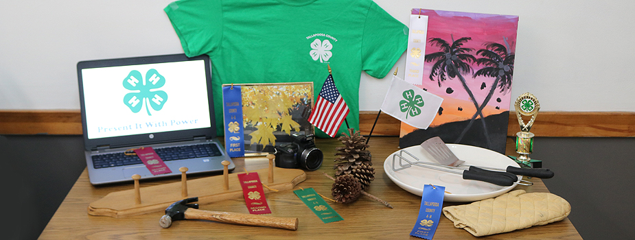 4-H Indoor and Outdoor Roundup - May 6th